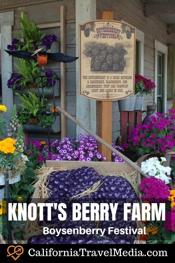 Knott's Berry Farm Boysenberry Festival #travel #trip #vacation #california #knotts #knotts-berry-farm #food #festival #Boysenberry #Boysenberry-Festival #southern-california